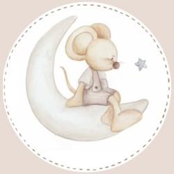 Placa puerta ratoncito luna